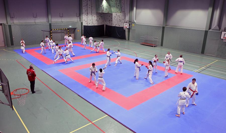 Helgen 14-15 januari ledde för tredje gången förre världsmästaren Jasem Vishkaei ett kumiteläger i Åsele.
