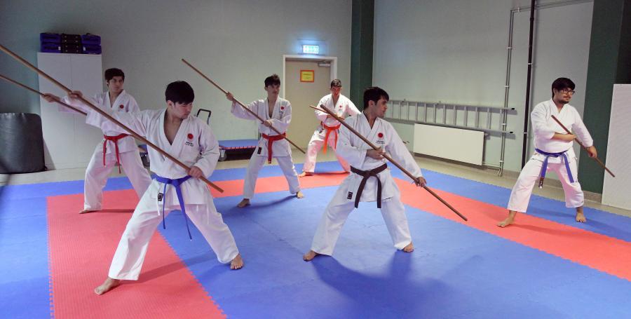 Boträning under lägret 4 februari där det tränades goshindo, kobudo och iaido.