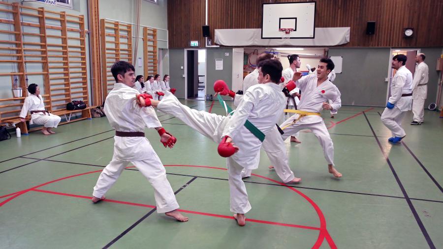 Den 17/3 var det ÖNKF kumiteträning i Umeå under ledning av Simon Adolfsson.