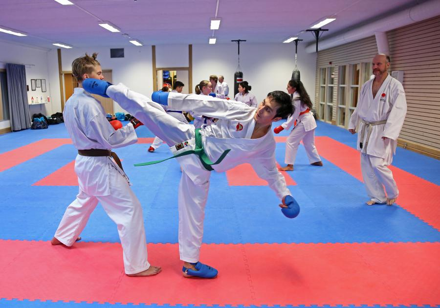 Fyra av klubbens medlemmar deltog i ÖNKF:s kumite- och kataträning i Skellefteå lördag 10 november.