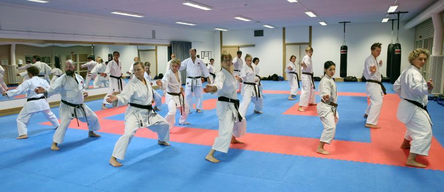 Fyra av klubbens medlemmar deltog helgen 1-2 december i JKA Swedens läger i Skellefteå.