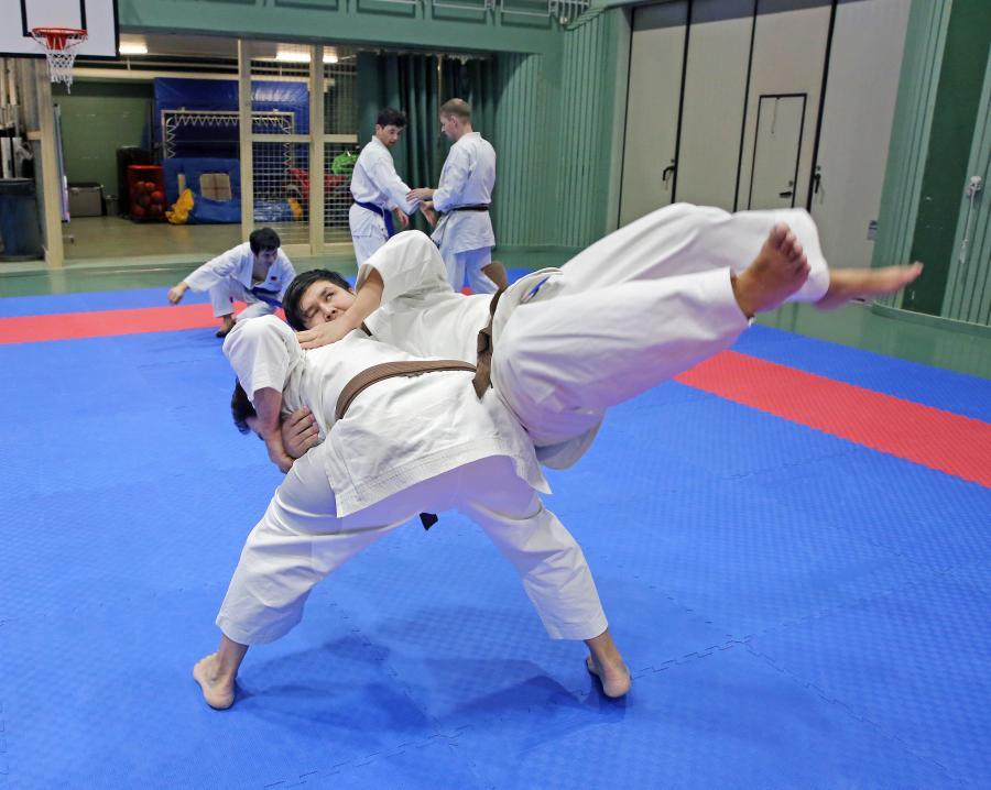 Lördag 12 januari tränades det goshindo och kobudo i Åsele.