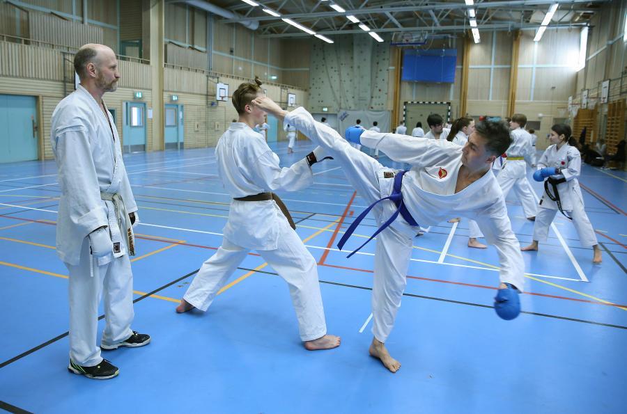 Lördag 13 april deltog klubben i kumiteträning i Umeå.