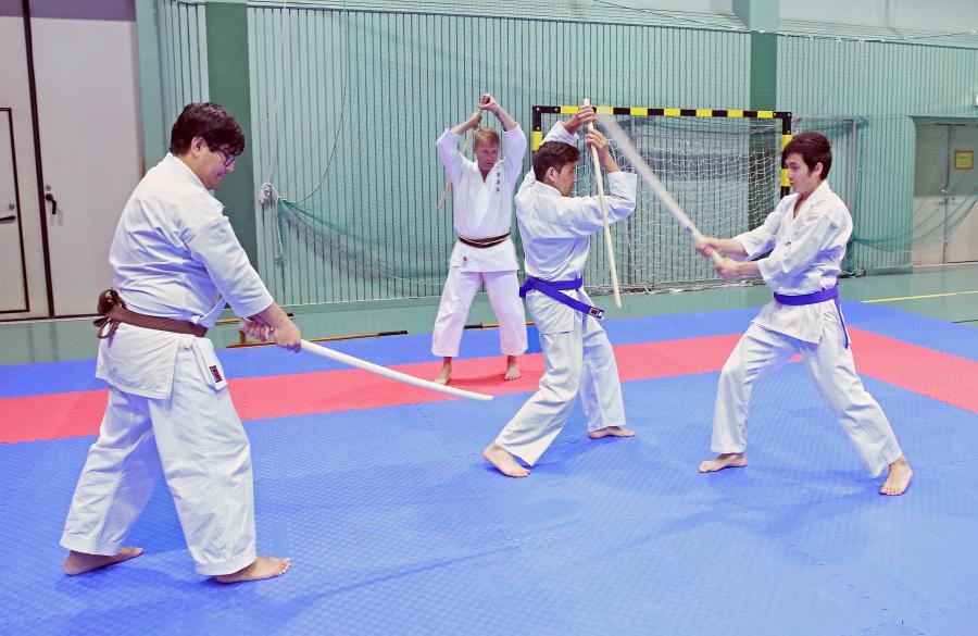 Lördag 6 juli tränade några i klubben goshindo, kobudo, iaido och även en del bunkai, med Johan Backteman.
