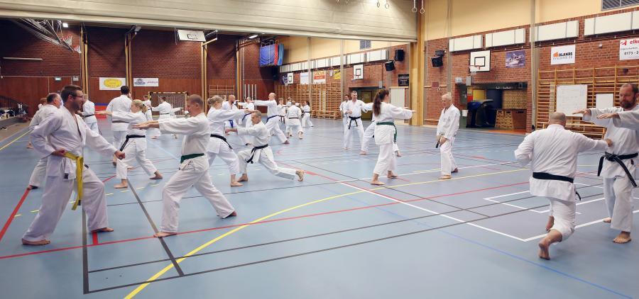Östhammars karateklubb bildades för 40 år sedan. För att fira detta arrangerade de ett jubileumsläger med Scott Langley.