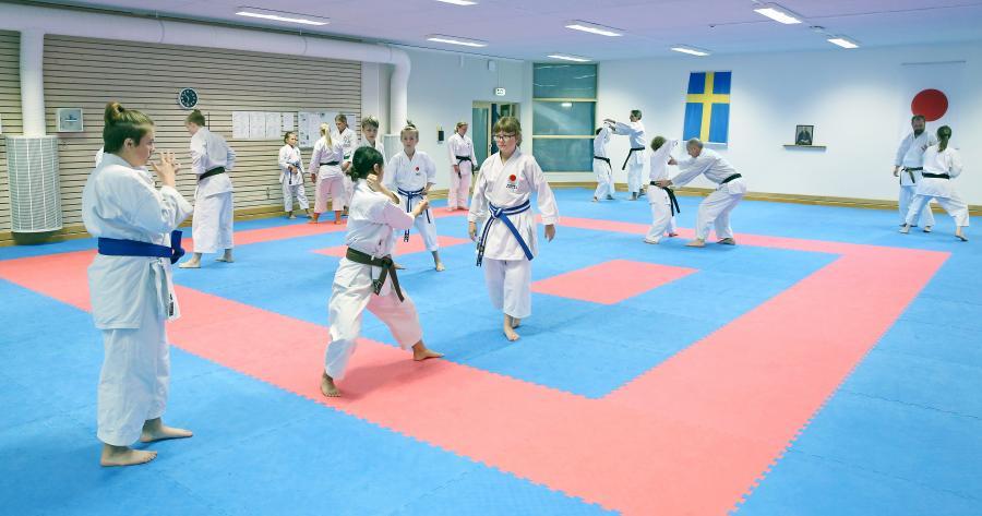 Övre Norrlands Karateförbund, ÖNKF, hade helgen 31/8-1/9, ett kataläger med Sandy Rantzow, 4 dan, på Budokan i Skellefteå.