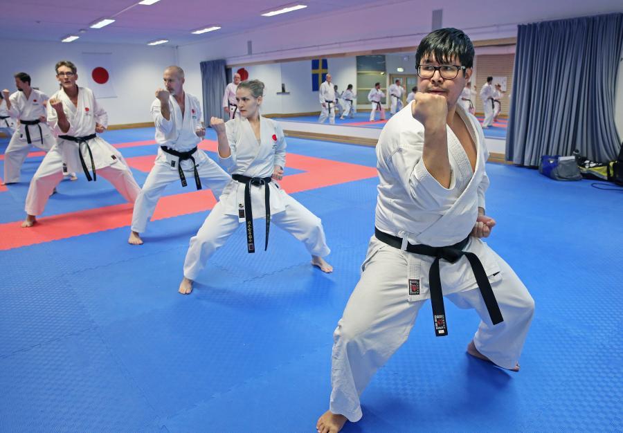 Mohsen Samadi, nämast i bild, från Åsele Shotokan KK, var en av deltagarna på lägret i Skellefteå helgen 18-19 januari.