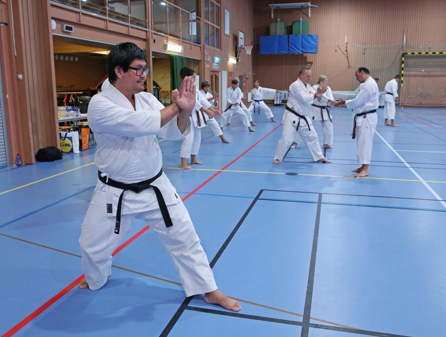 Mohsen tränar på katan Gankaku under instruktörslägret i Ljusdal, lett av Miro Unic, 6 dan, från JKA Sweden.