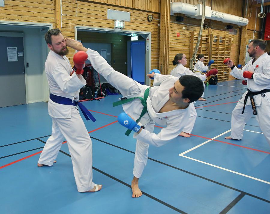 Klubben deltog lördag 10 oktober i kumiteträning i Umeå.