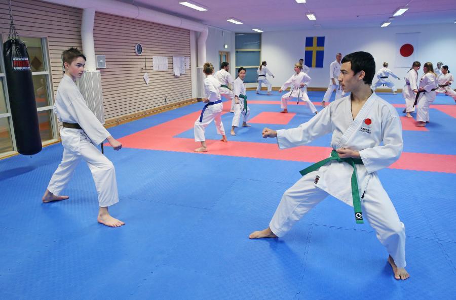Medlemmar i klubben deltog i ÖNKF:s kataträning i Skellefteå lördag 24 oktober.