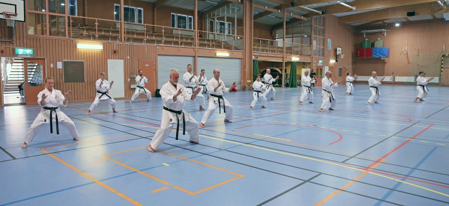Traditionsenligt, inför höstterminen, arrangerade Ljusdals karateklubb i Ljusdal ett instruktörsläger för JKA Swedens klubbar, helgen 4-5 september. Instruktör på lägret var Miro Unic, 6 dan, från JKA Sweden.